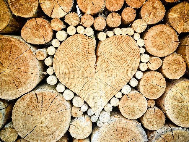 V čom je olej na drevo taký výnimočný?